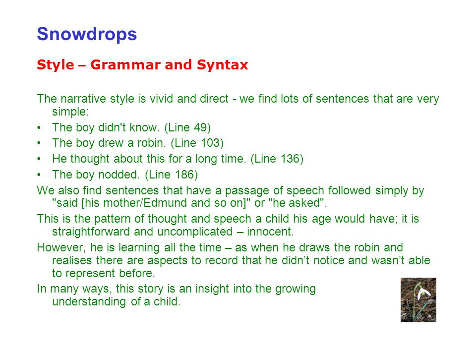 Snowdrops Style – Grammar and Syntax