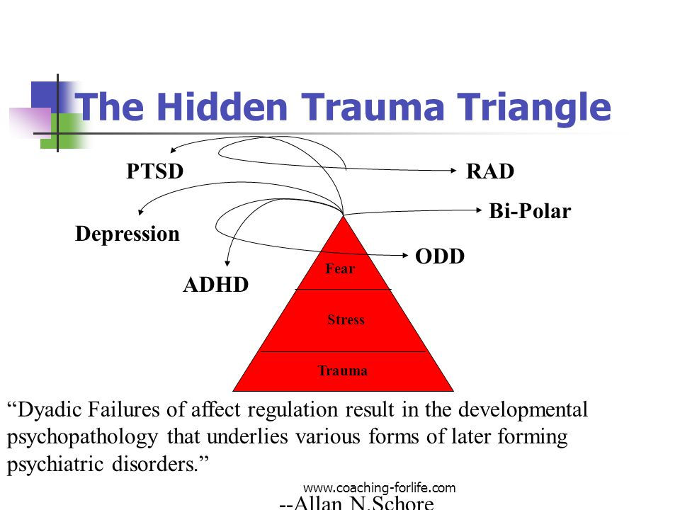 The Hidden Trauma Triangle