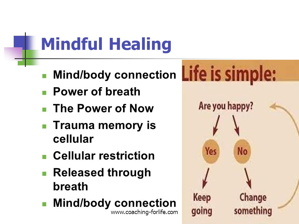 Mindful Healing Mind/body connection Power of breath The Power of Now