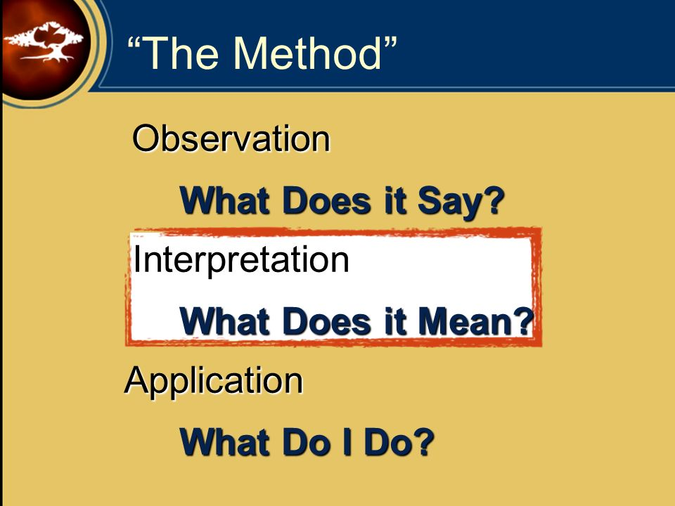 The Method Observation What Does it Say Interpretation