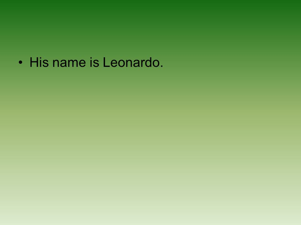 His name is Leonardo.