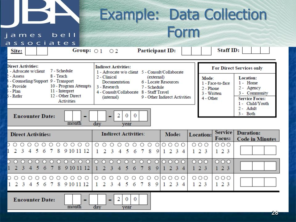 Example: Data Collection Form