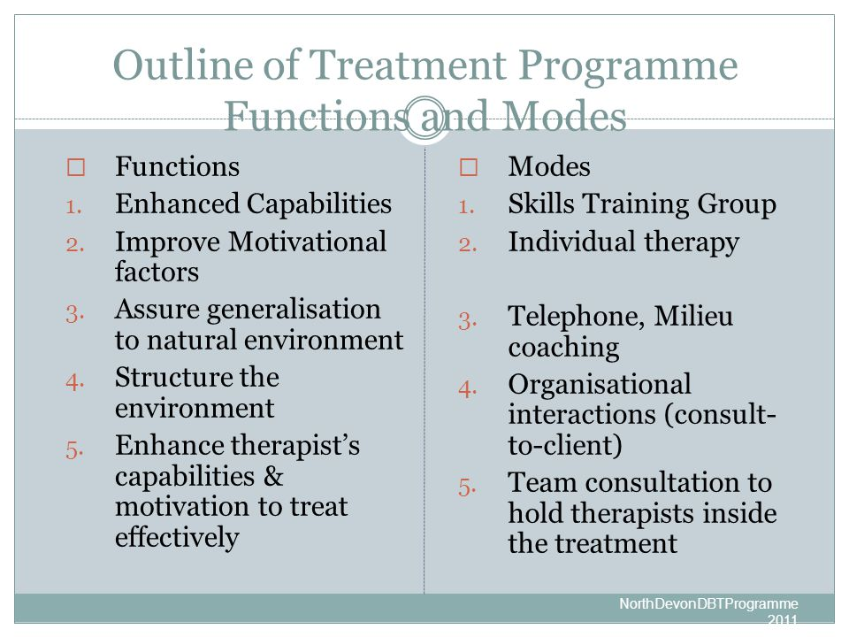 Outline of Treatment Programme Functions and Modes