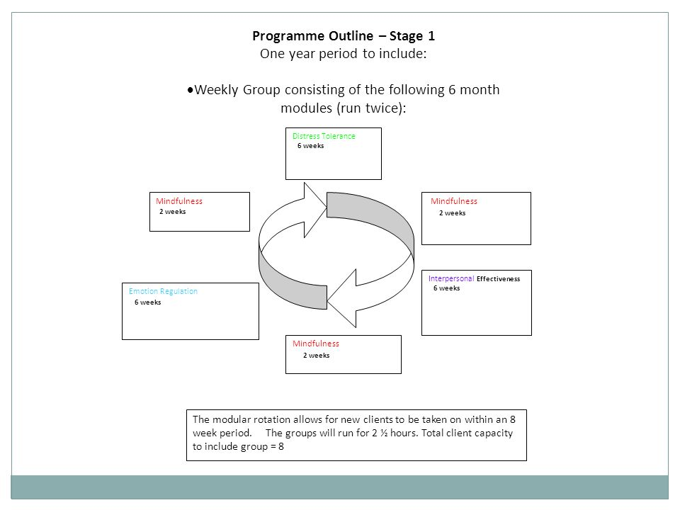 Programme Outline – Stage 1 One year period to include: