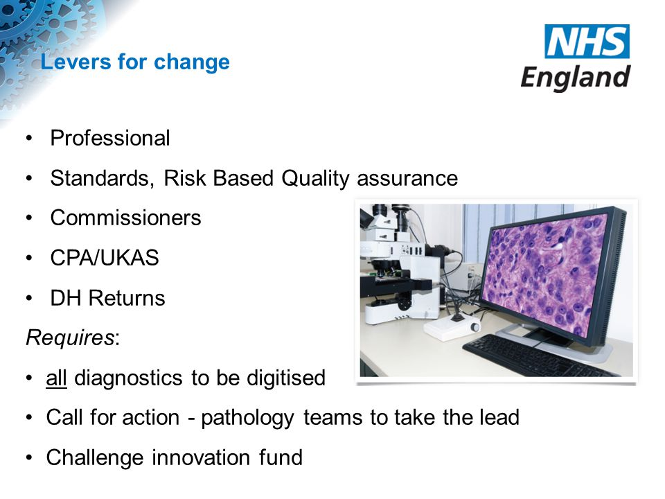 Levers for change Professional Standards, Risk Based Quality assurance