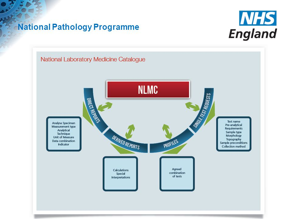 National Pathology Programme