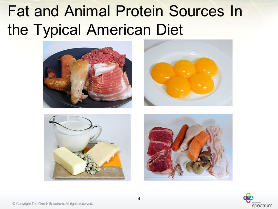 Fat and Animal Protein Sources In the Typical American Diet