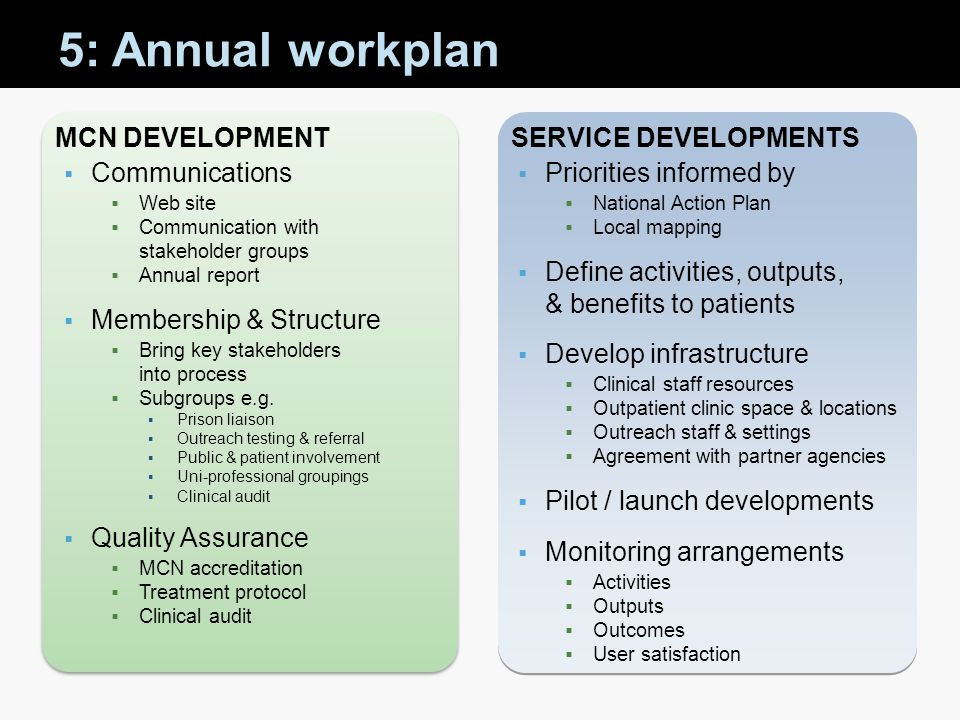 5: Annual workplan MCN Development Service Developments Communications