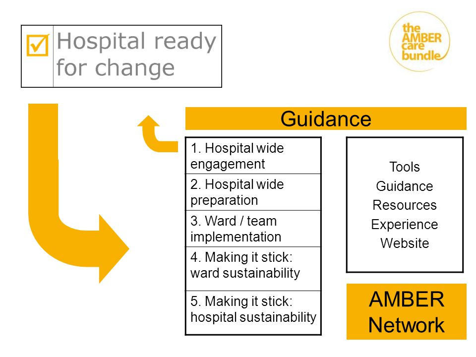 Guidance AMBER Network 1. Hospital wide engagement