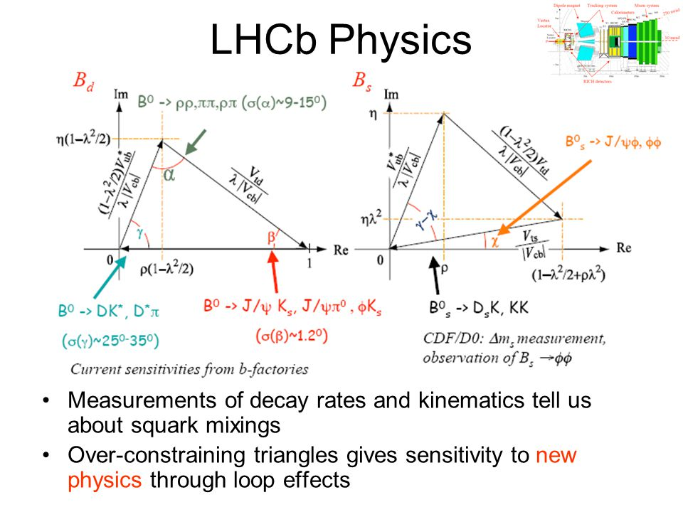 LHCb Physics Measurements of decay rates and kinematics tell us about squark mixings.