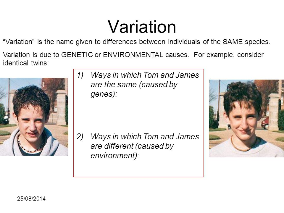 Variation Ways in which Tom and James are the same (caused by genes):