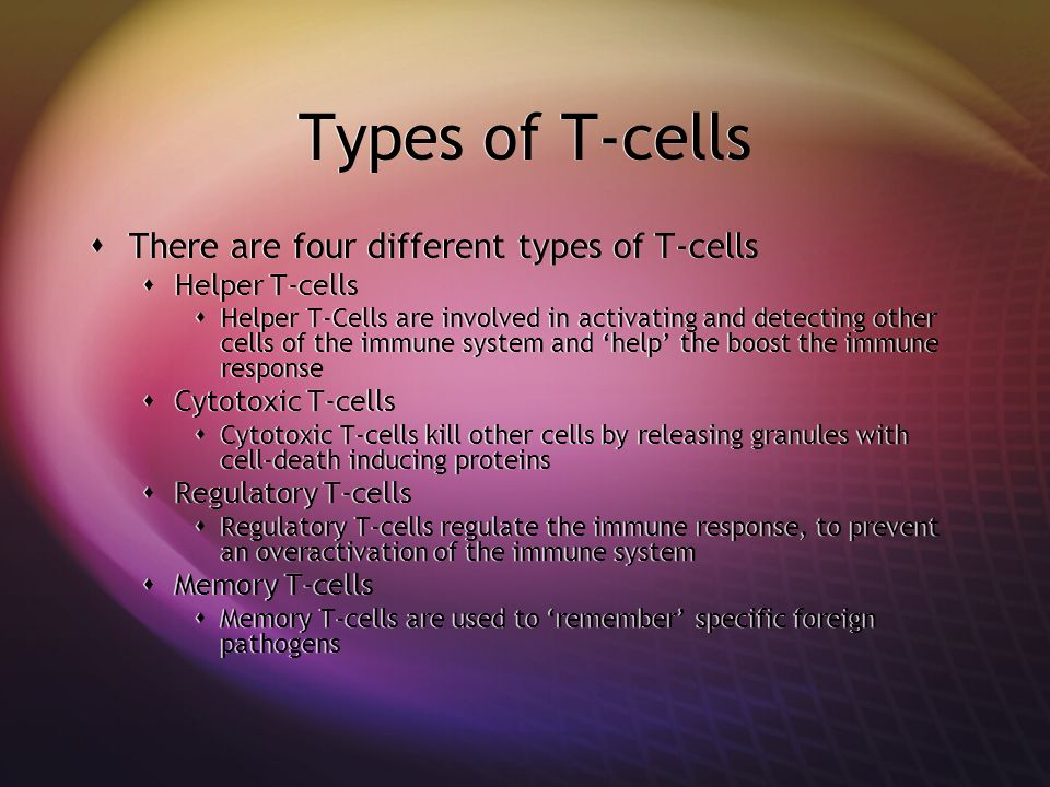 Types of T-cells There are four different types of T-cells