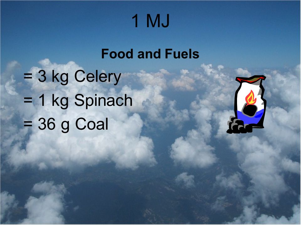 Food and Fuels = 3 kg Celery = 1 kg Spinach = 36 g Coal
