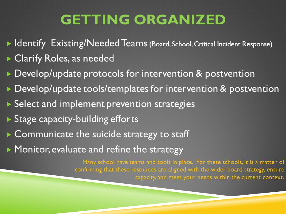 Getting organized Identify Existing/Needed Teams (Board, School, Critical Incident Response) Clarify Roles, as needed.