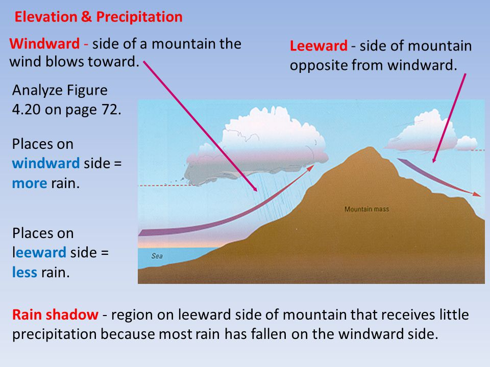 Elevation & Precipitation