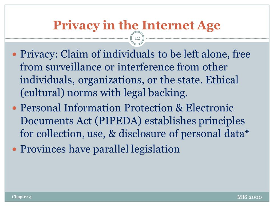 Privacy in the Internet Age
