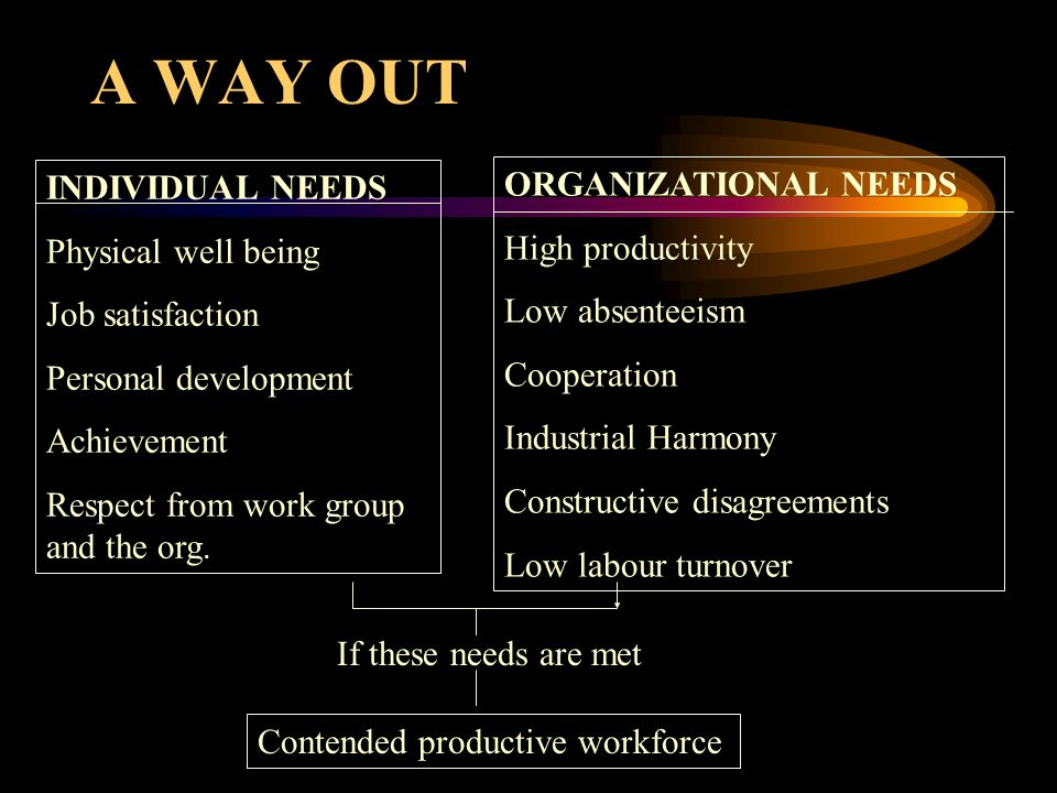 A WAY OUT ORGANIZATIONAL NEEDS INDIVIDUAL NEEDS High productivity