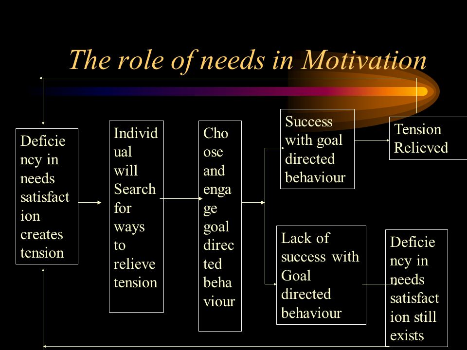 The role of needs in Motivation