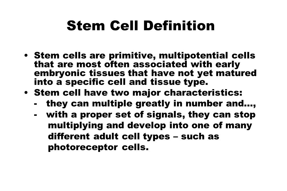 Stem Cell Definition