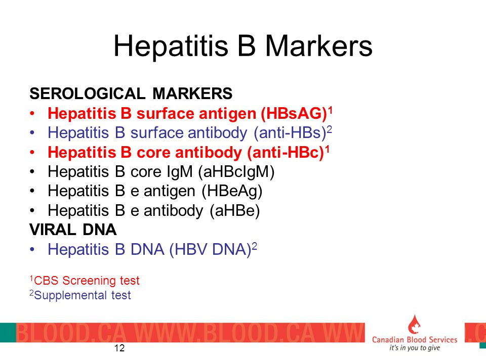 Hepatitis B Markers SEROLOGICAL MARKERS