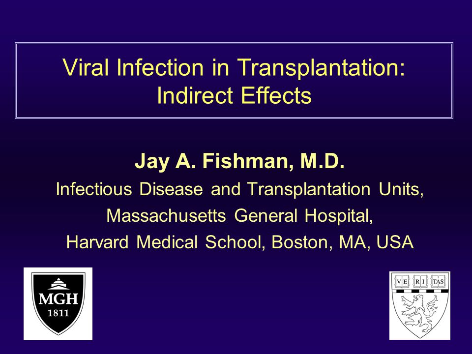 Viral Infection in Transplantation: Indirect Effects