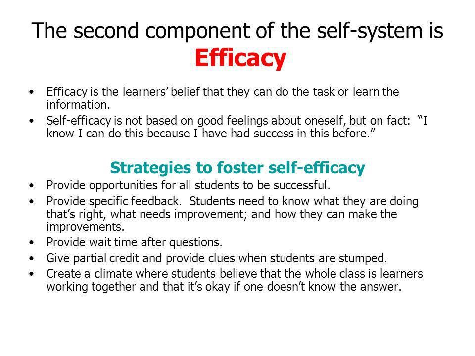 The second component of the self-system is Efficacy