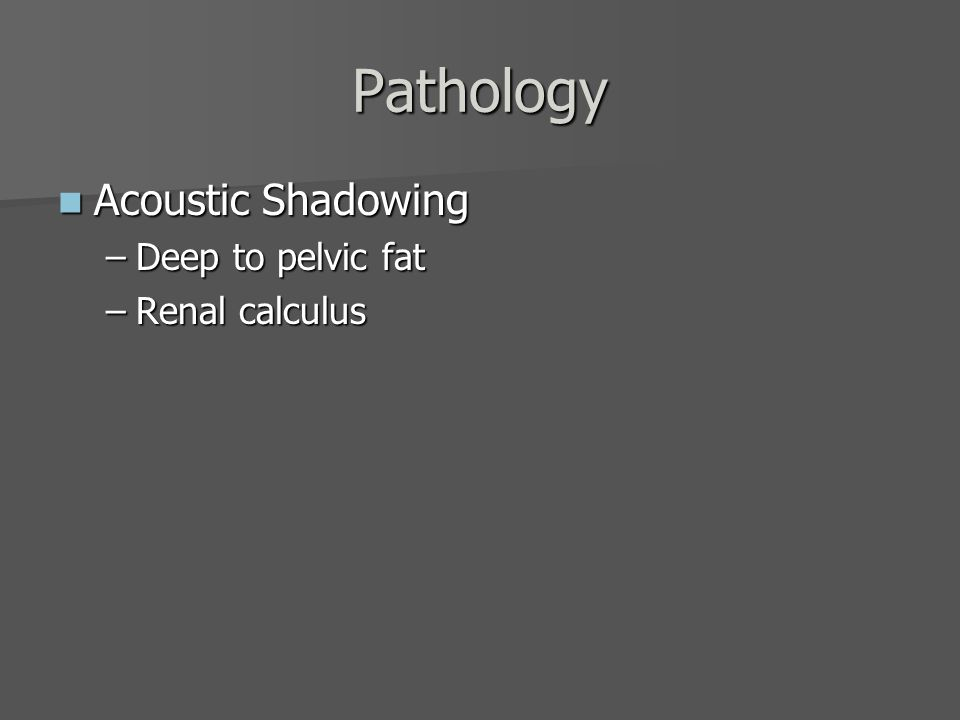 Pathology Acoustic Shadowing Deep to pelvic fat Renal calculus