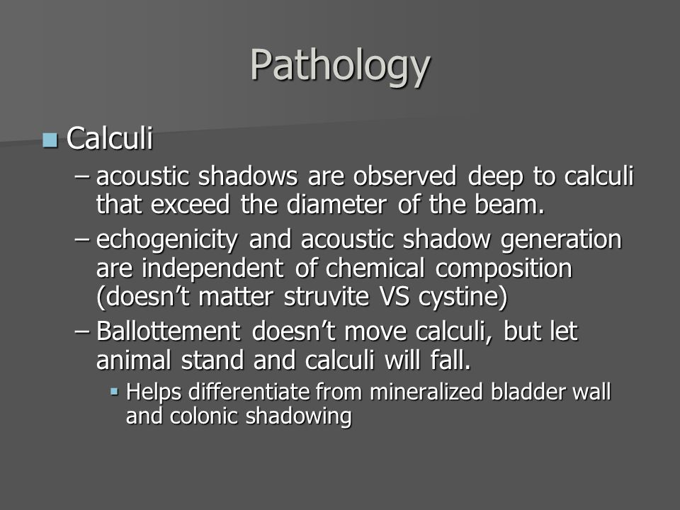 Pathology Calculi. acoustic shadows are observed deep to calculi that exceed the diameter of the beam.