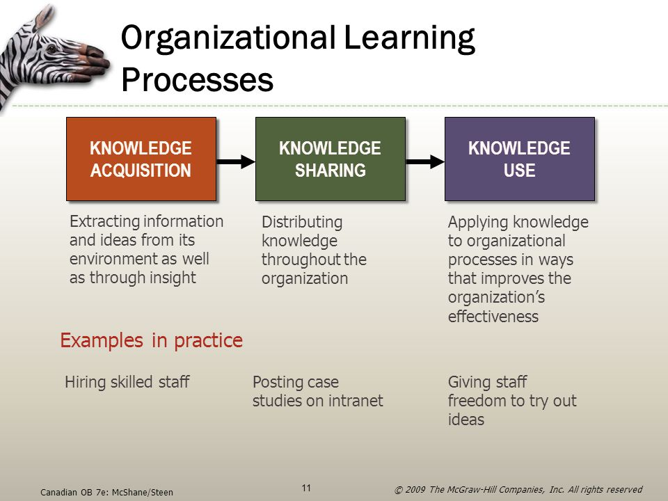 Organizational Learning Processes