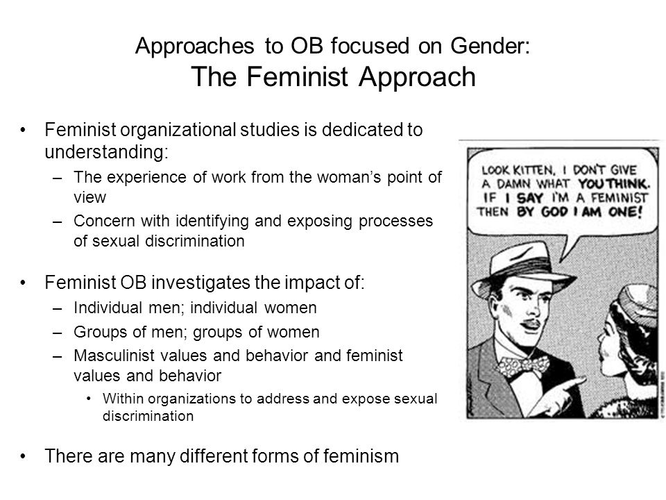 Approaches to OB focused on Gender: The Feminist Approach