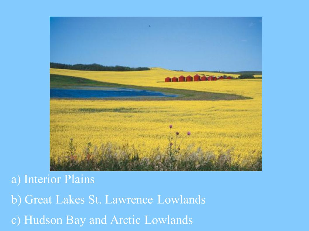 a) Interior Plains b) Great Lakes St. Lawrence Lowlands c) Hudson Bay and Arctic Lowlands