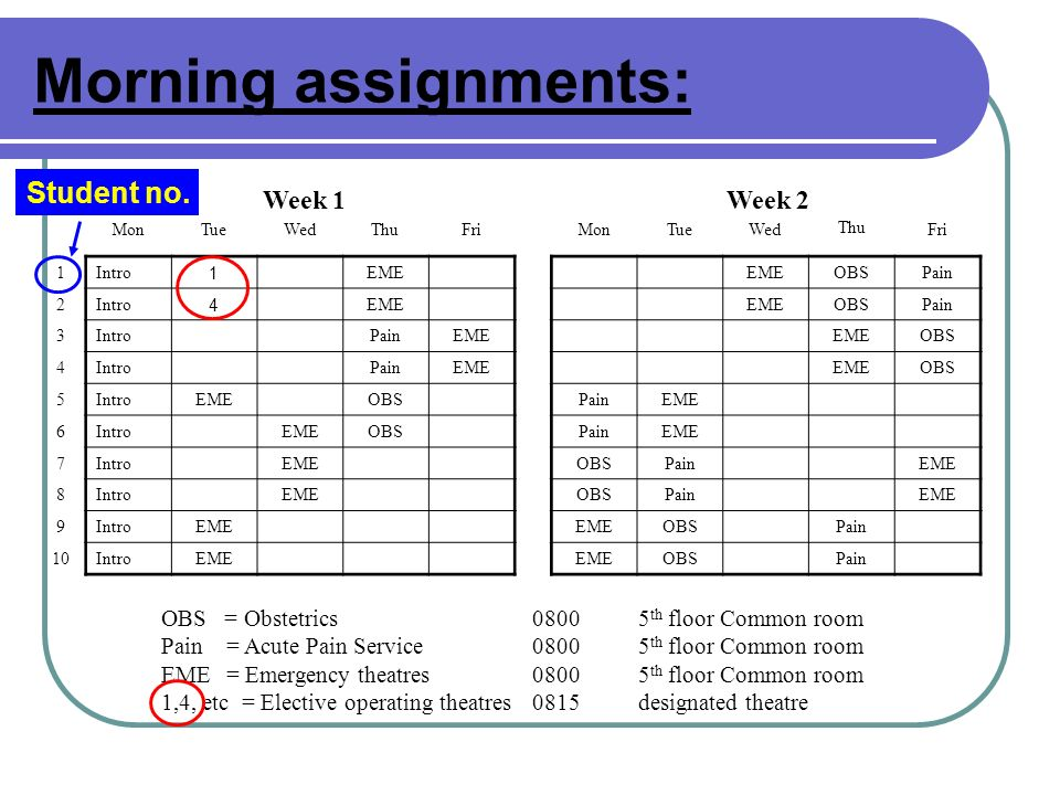 Morning assignments: Student no. Week 1 Week 2
