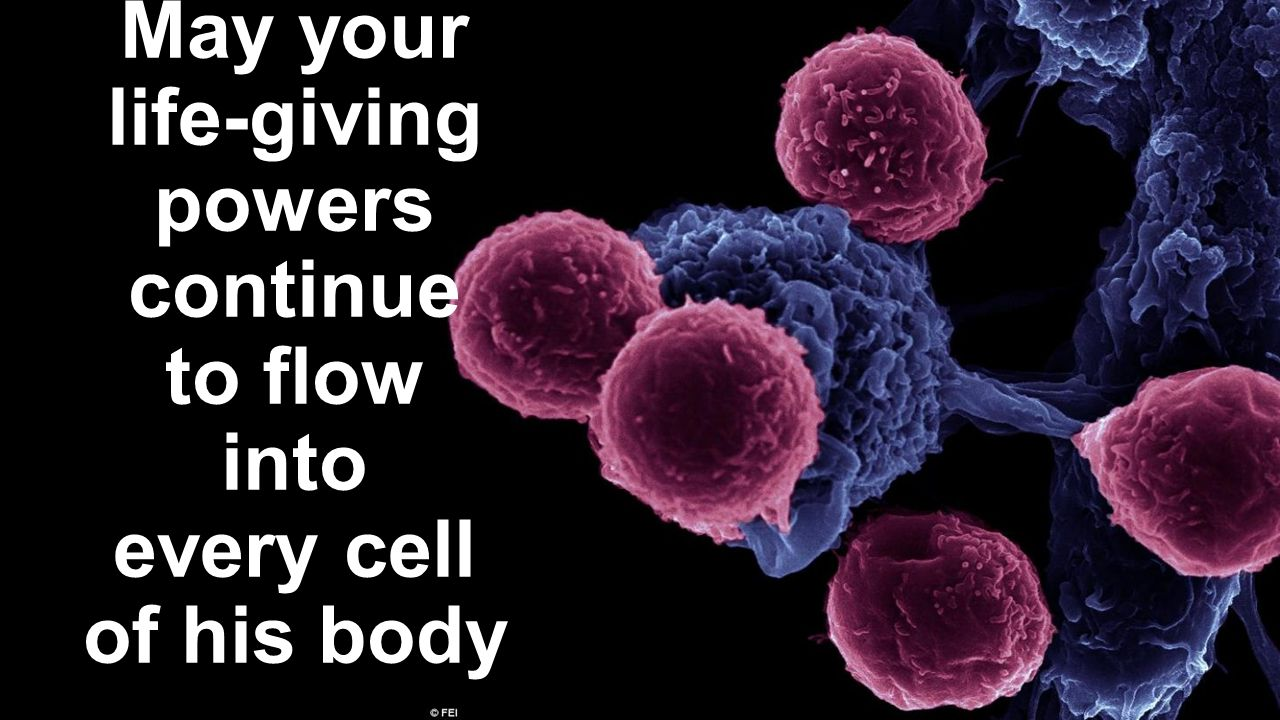 May your life-giving powers continue to flow into every cell of his body