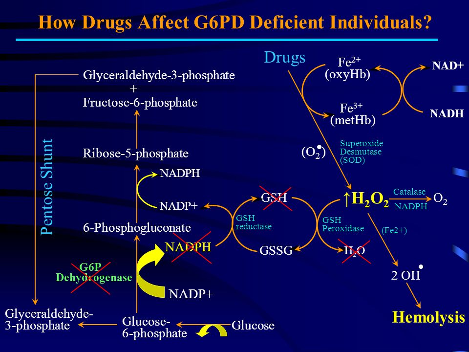How Drugs Affect G6PD Deficient Individuals
