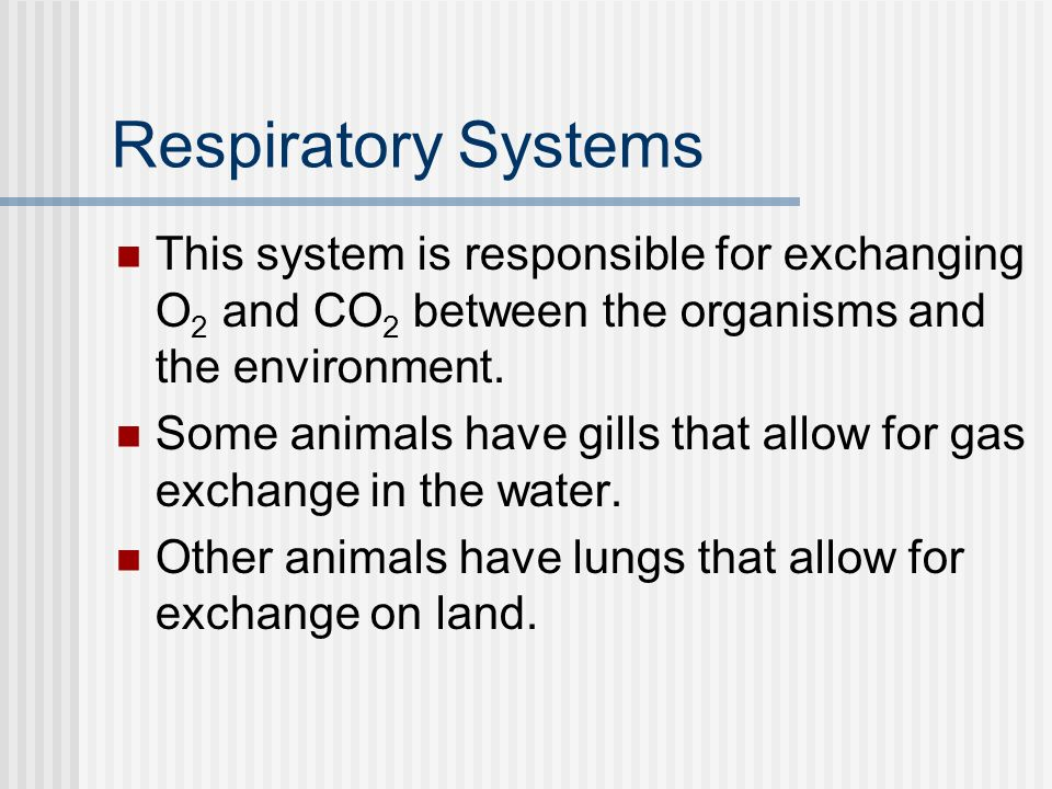 Respiratory Systems This system is responsible for exchanging O2 and CO2 between the organisms and the environment.