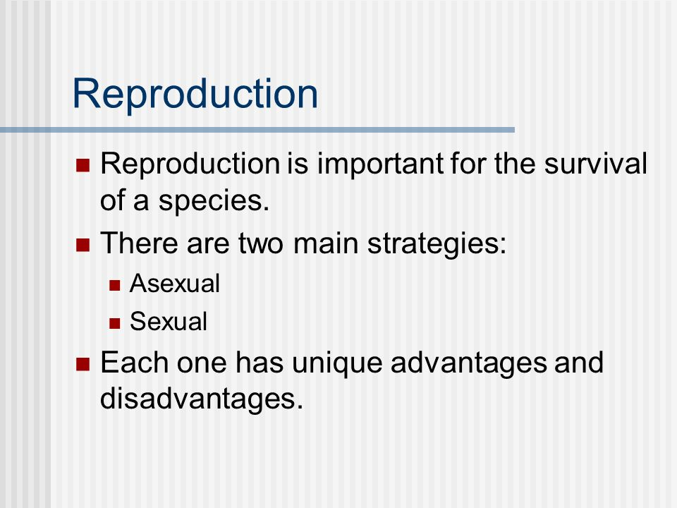 Reproduction Reproduction is important for the survival of a species.
