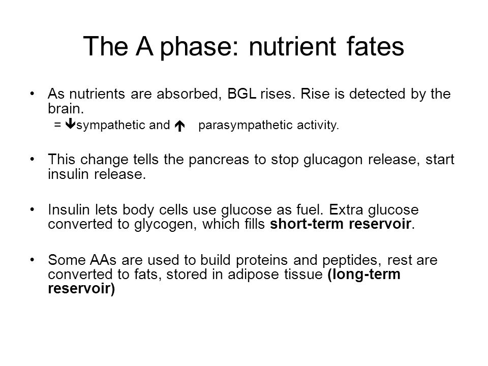 The A phase: nutrient fates