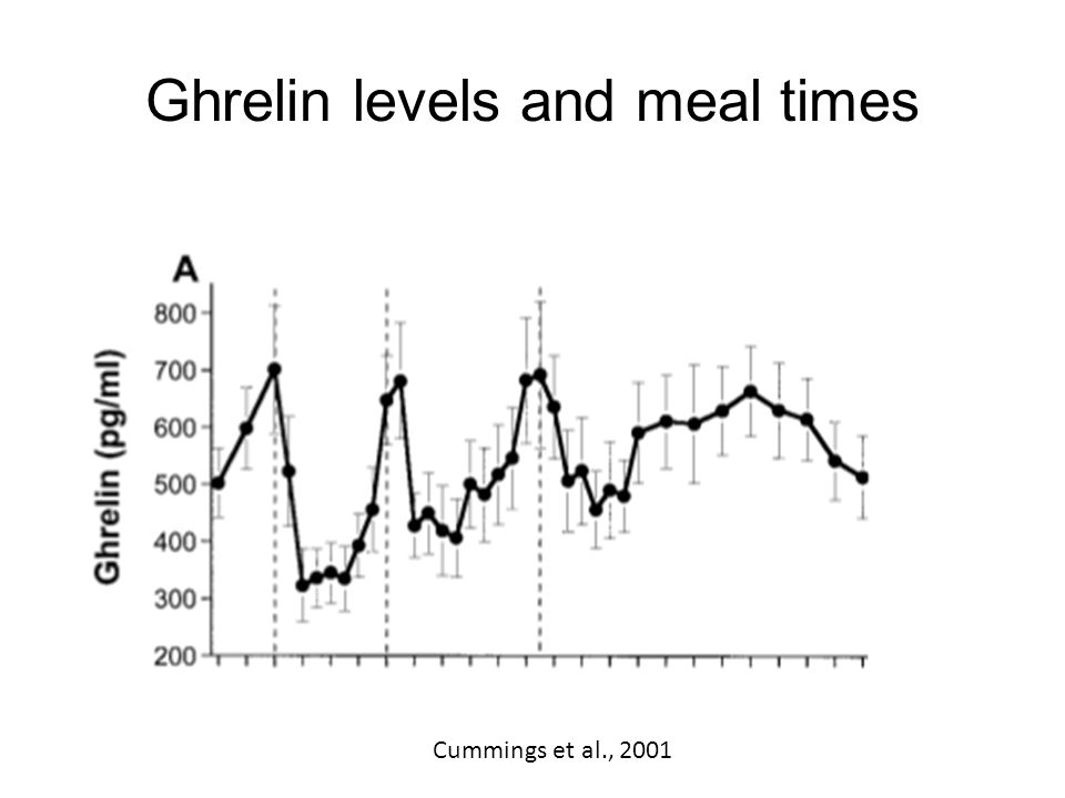 Ghrelin levels and meal times