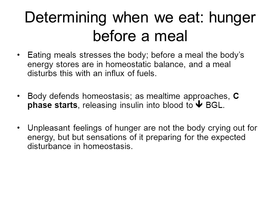Determining when we eat: hunger before a meal