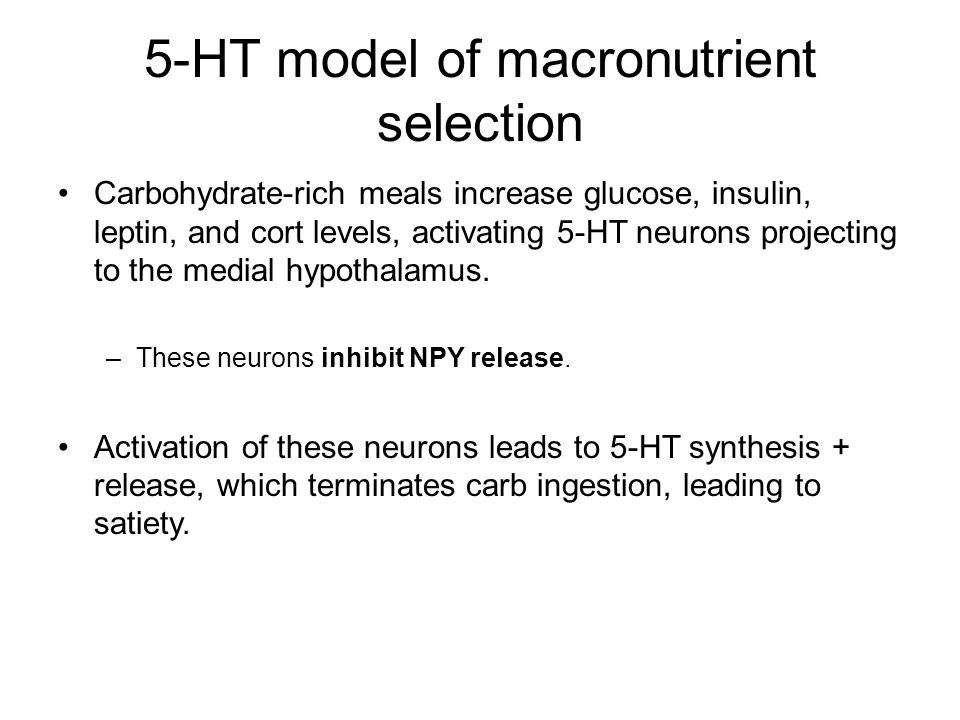 5-HT model of macronutrient selection