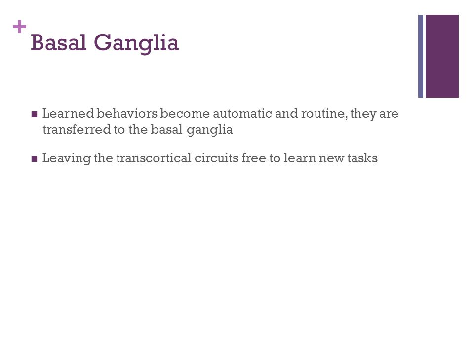 Basal Ganglia Learned behaviors become automatic and routine, they are transferred to the basal ganglia.