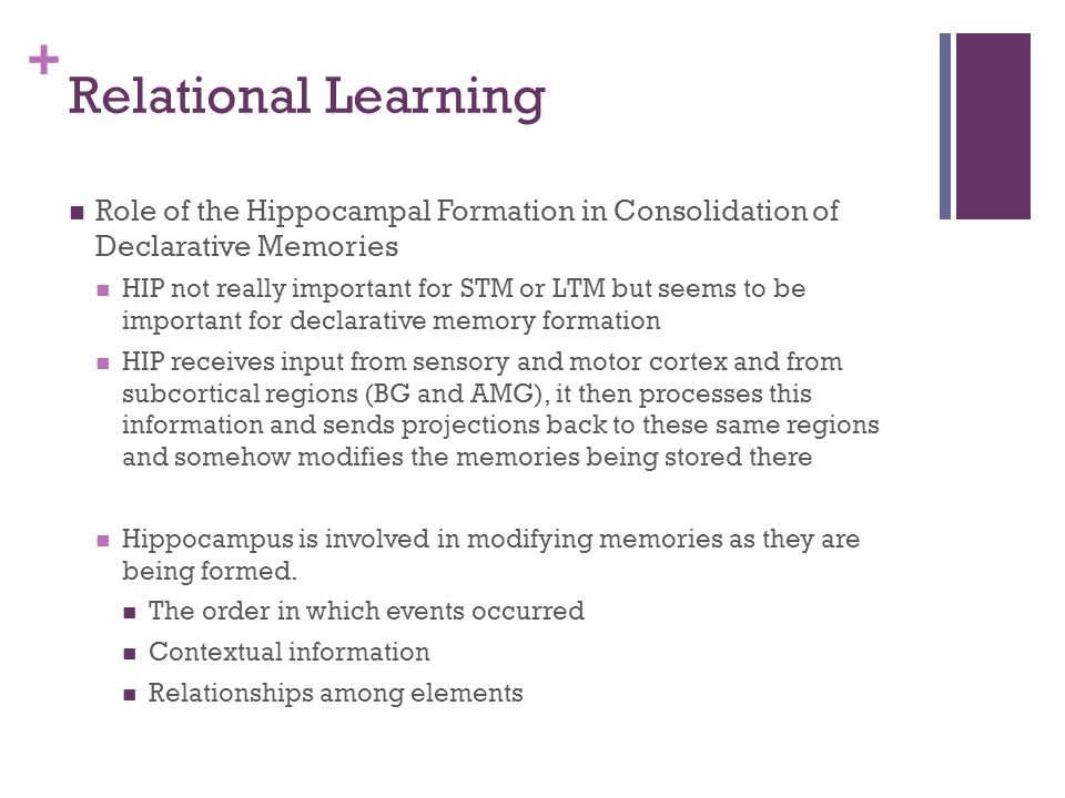 Relational Learning Role of the Hippocampal Formation in Consolidation of Declarative Memories.