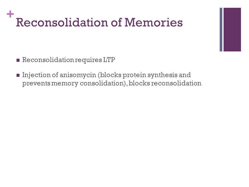 Reconsolidation of Memories