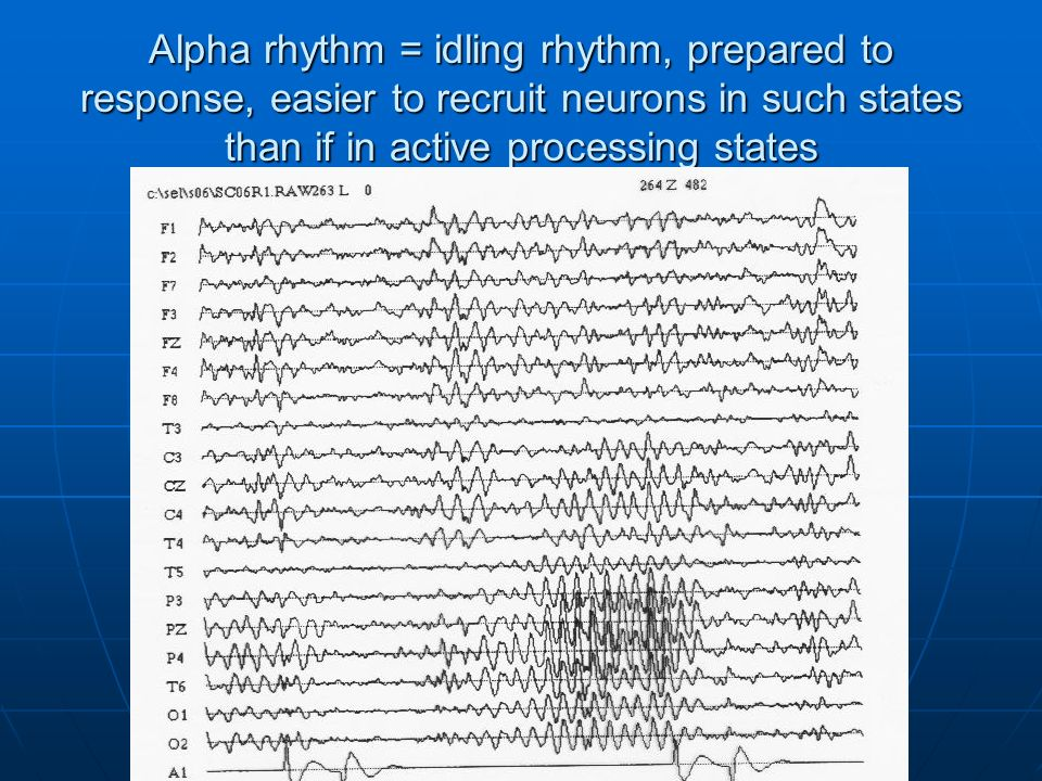 Alpha rhythm = idling rhythm, prepared to response, easier to recruit neurons in such states than if in active processing states