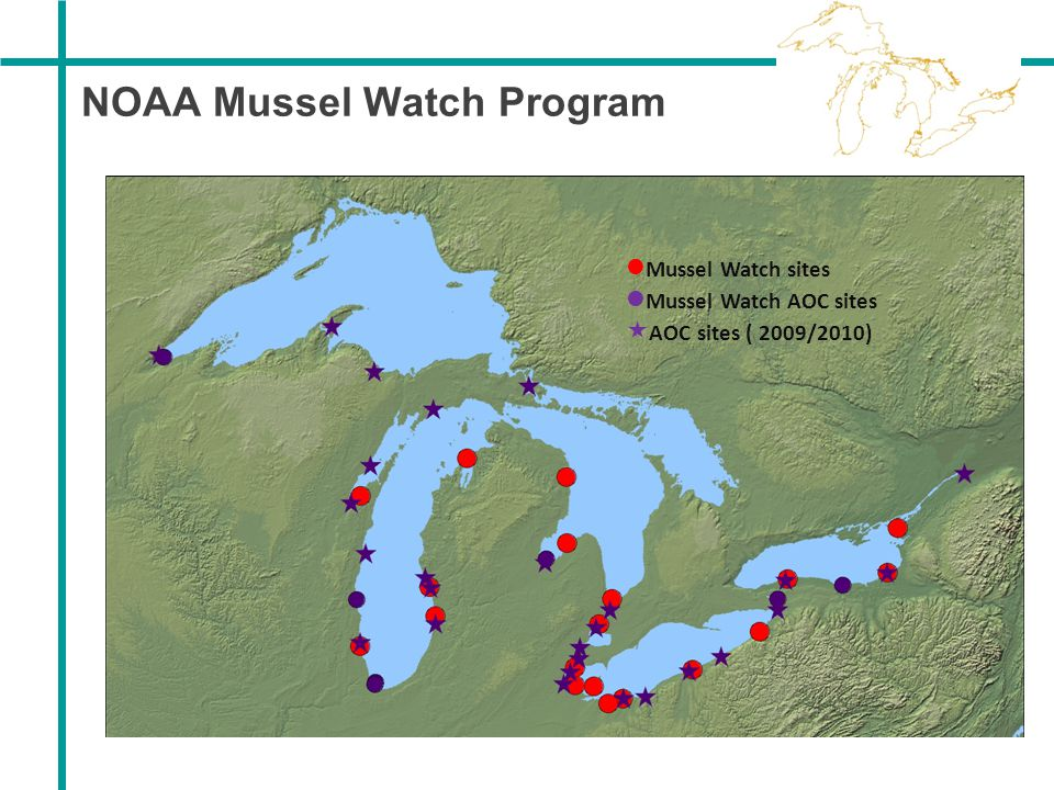NOAA Mussel Watch Program