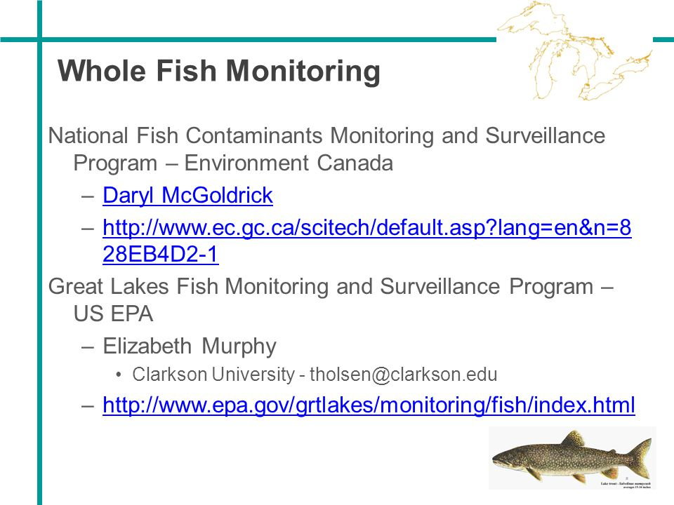Whole Fish Monitoring National Fish Contaminants Monitoring and Surveillance Program – Environment Canada.