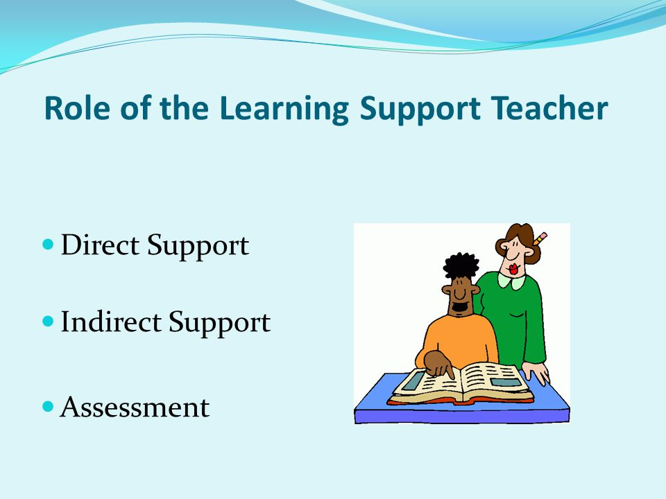 Role of the Learning Support Teacher