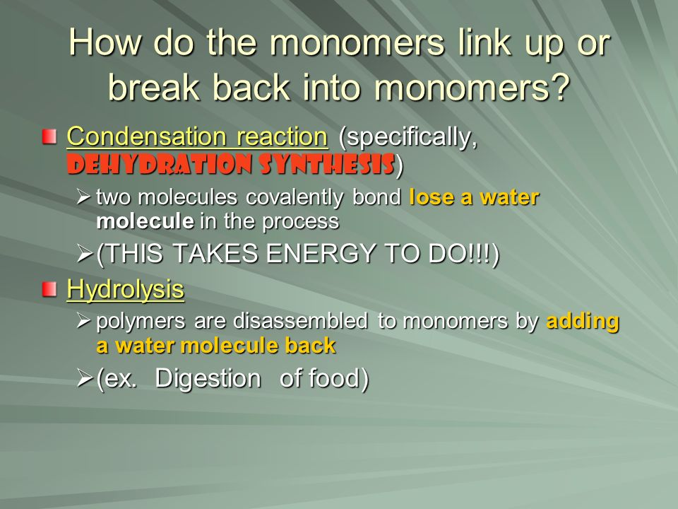 How do the monomers link up or break back into monomers