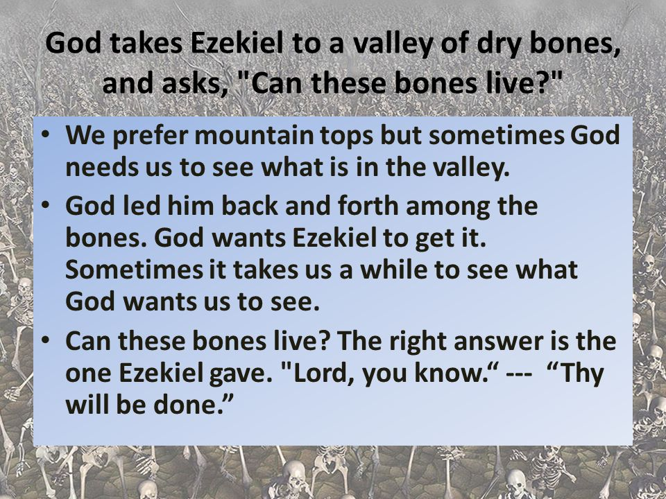 God takes Ezekiel to a valley of dry bones, and asks, Can these bones live
