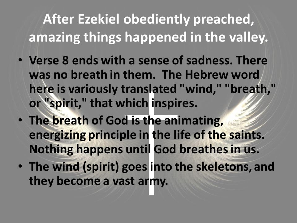 After Ezekiel obediently preached, amazing things happened in the valley.
